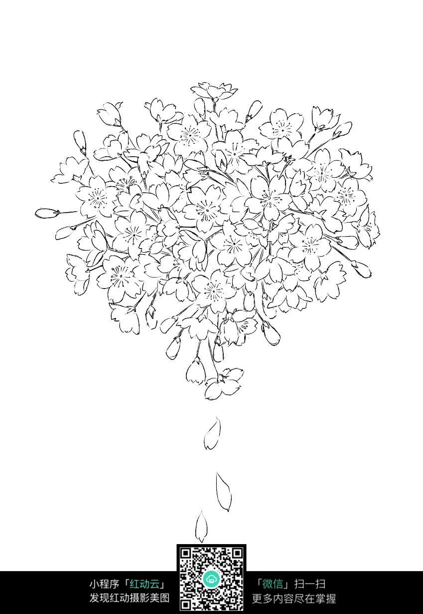 海棠花手绘线描稿