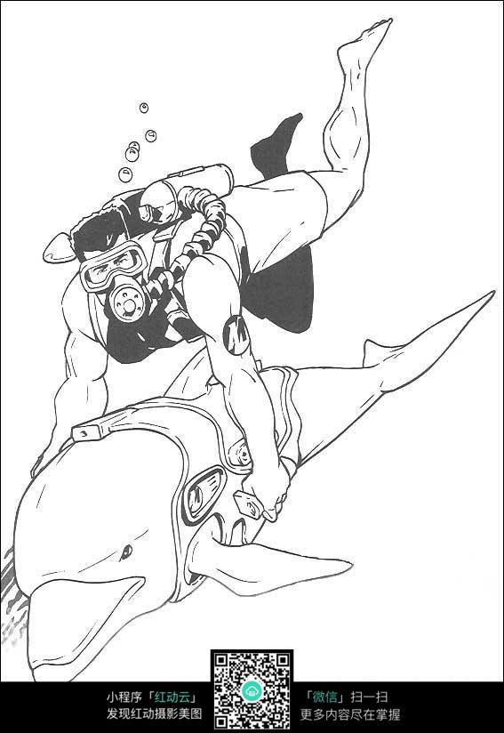 和鲸鱼潜水的运动员手绘线描画