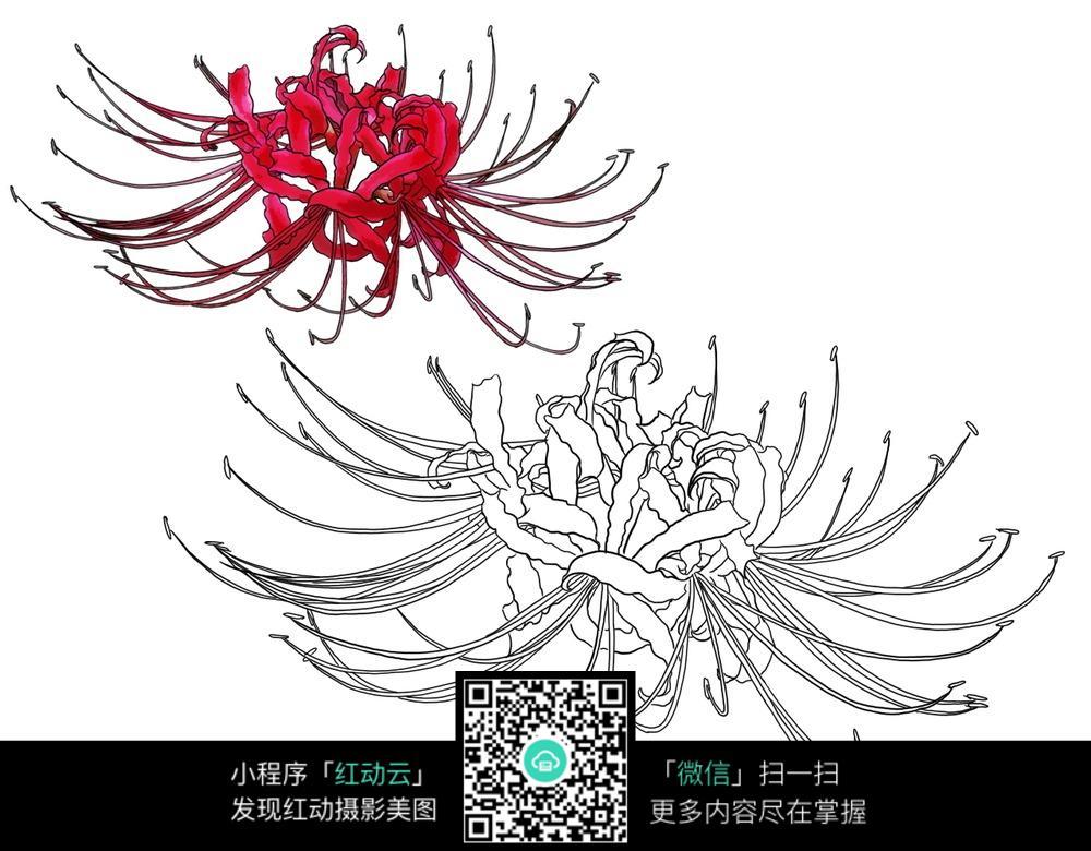 四格物语漫画源漫画君布卡素材图片