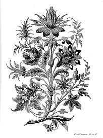 花纹花枝装饰图案素材