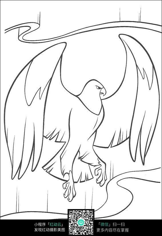 老鹰手绘线稿图