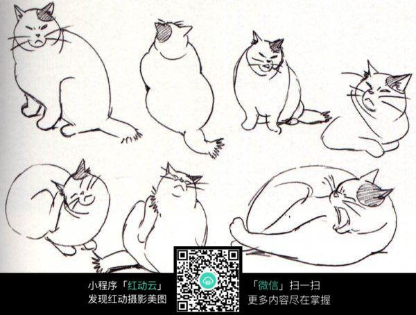 猫咪手绘线稿图片