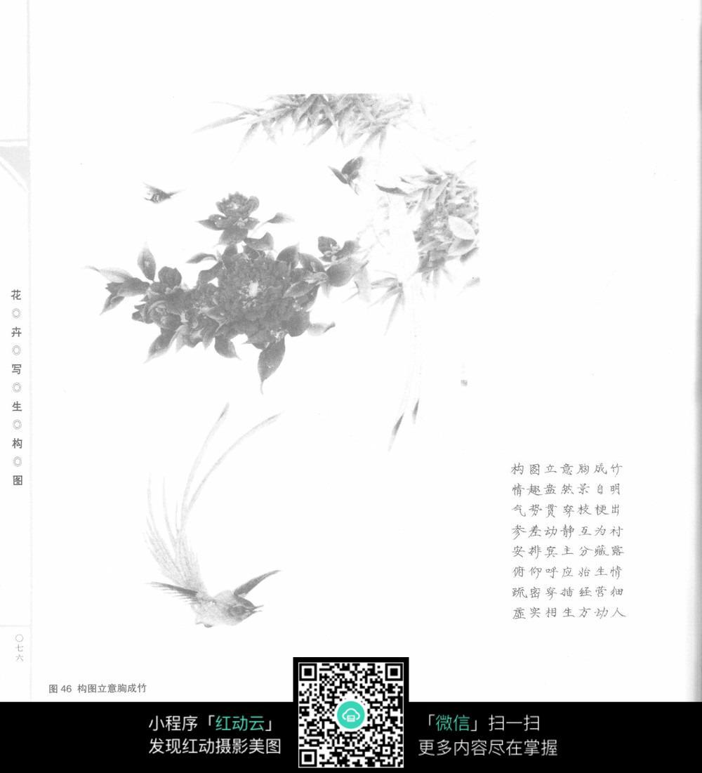 手绘花卉黑白图图片