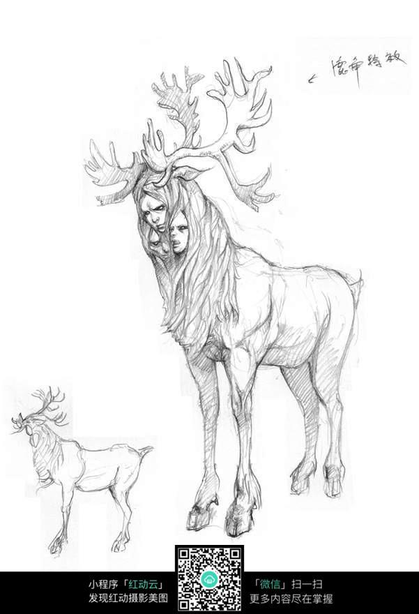 双头鹿手绘线稿素材
