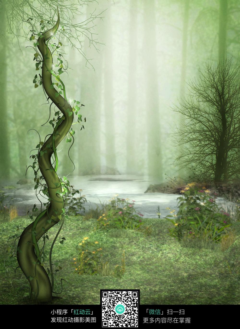 唯美树藤森林背景