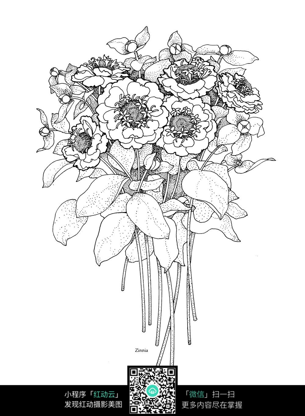 一束鲜花图案素材图片免费下载 编号3680838 红动网