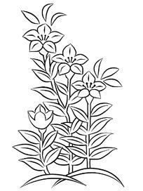 植物花卉线描