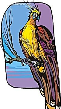 金色凤凰动物卡通手绘插图图片