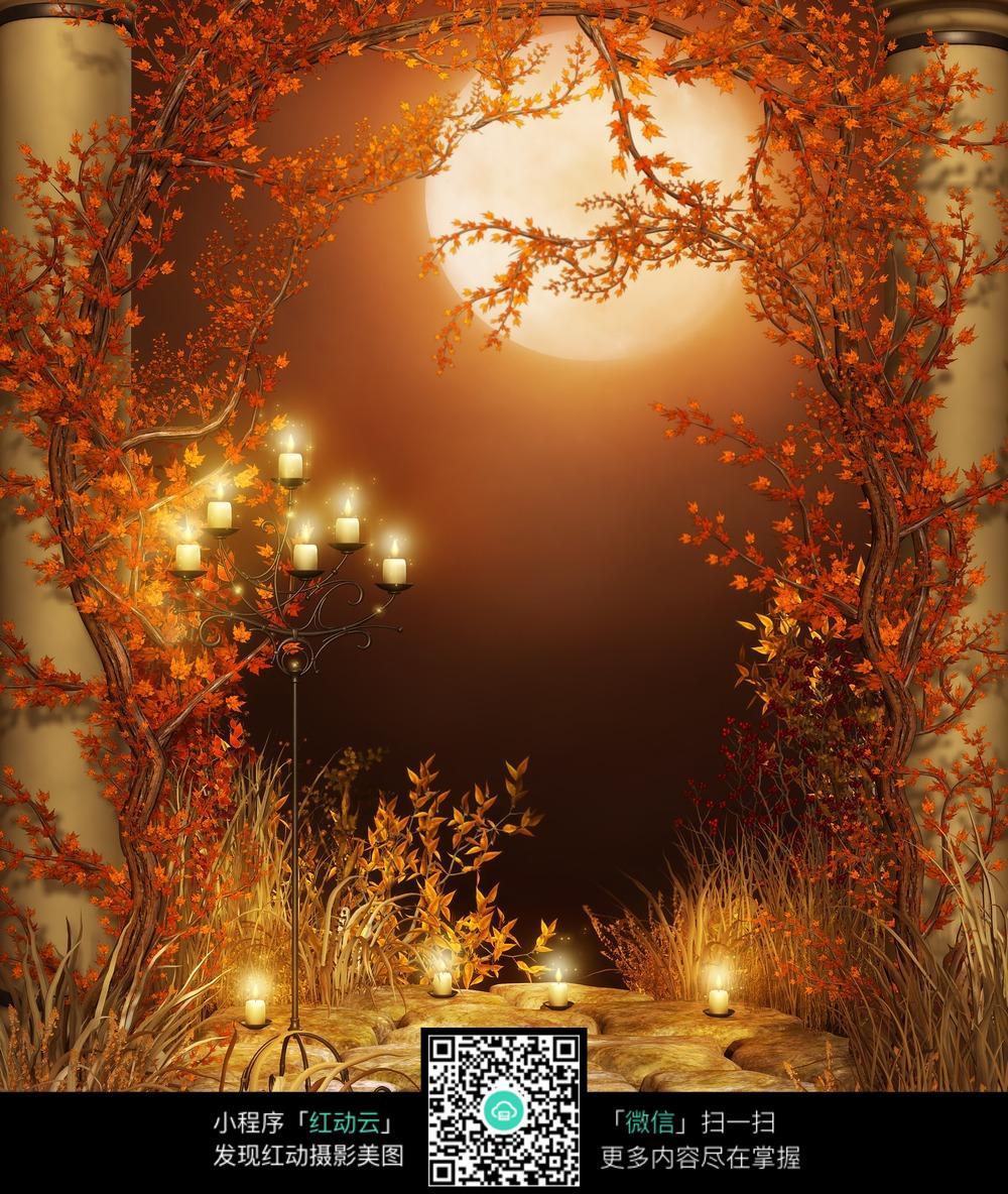 暖色调暖烛光树藤数码背景画图片免费下载 编号3790988 红动网图片