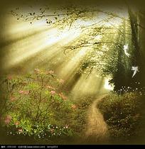 森林里的梦幻精灵