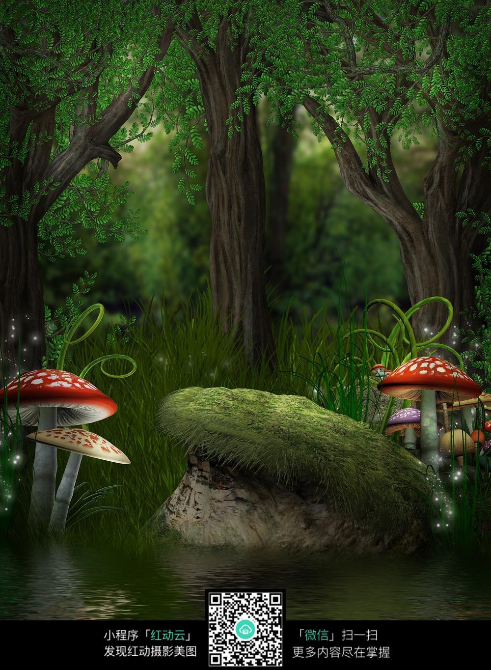 森林蘑菇雪景背景图片_道路摄影图片_红动手机版