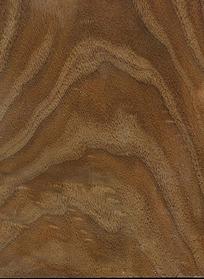 矢量木纹图片