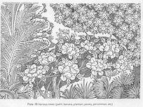 果手绘线描图形 黑白装饰画线描