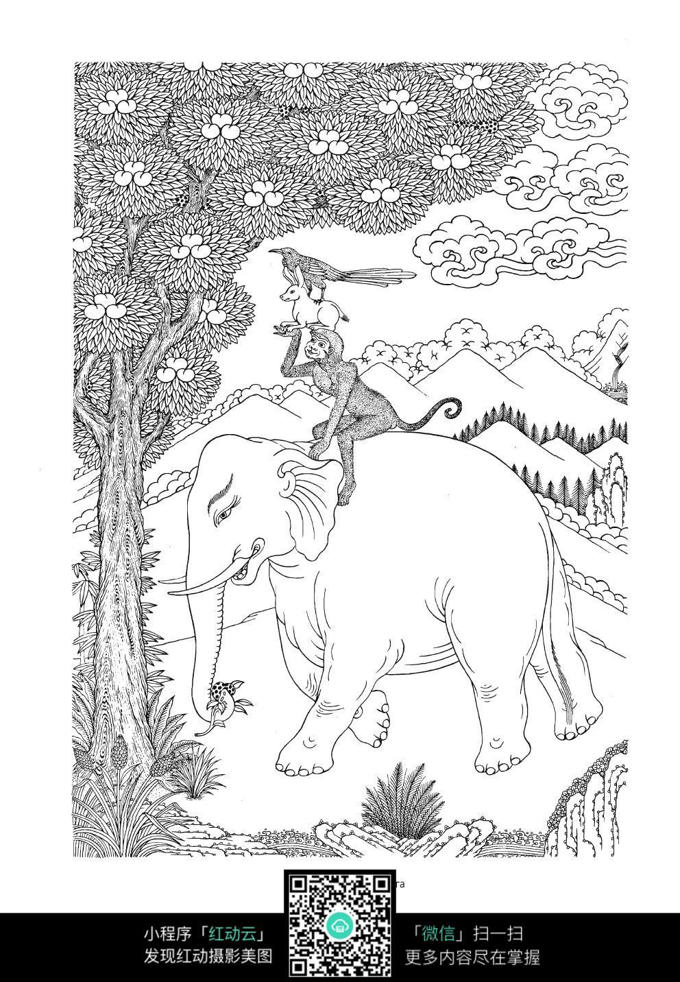 树林骑大象的猴子手绘线描图片
