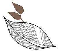 线条树叶花纹psd素材