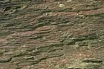 砖石素材图片