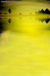 暖黄色树木湖面倒影