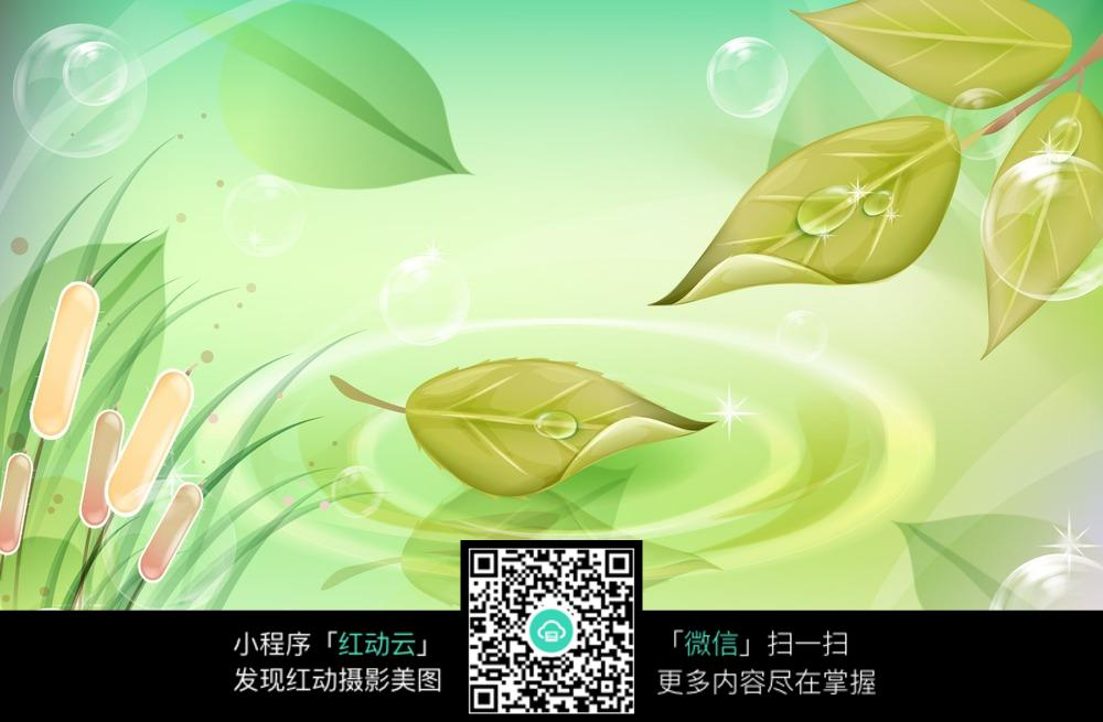 水滴树叶梦幻图片素材