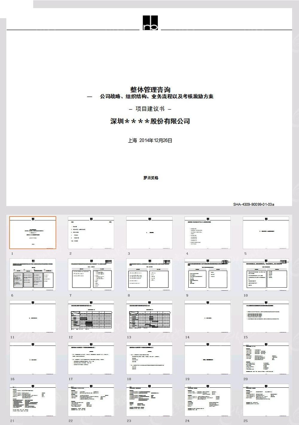 罗兰贝格标准项目建议书模板ppt素材免费下载 编号3881666 红动网