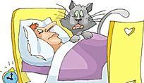 被闹钟吵醒的猫咪时尚矢量人物插画