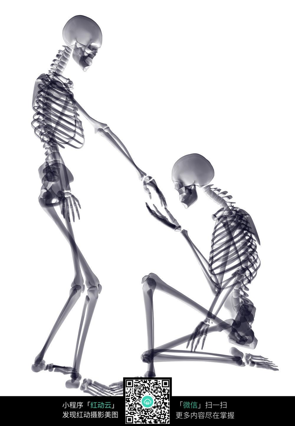 单膝跪地求婚的骷髅人图片