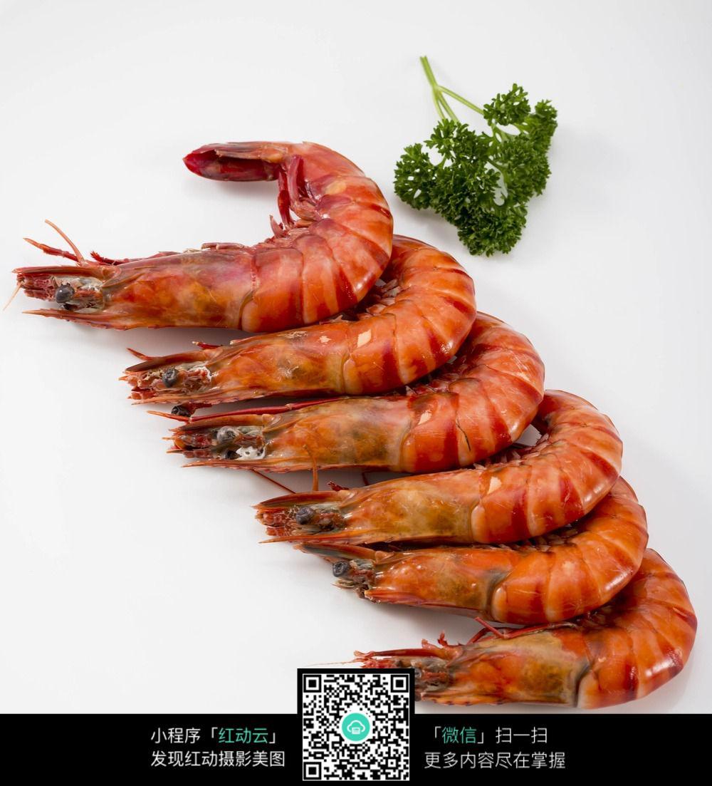 海虾的做法大全图解法