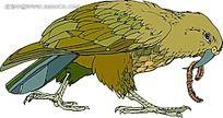 吃虫子的鹦鹉时尚漫画