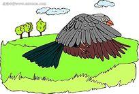 飞翔的老鹰韩国动物漫画