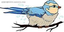 蓝色的长毛红嘴鸟时尚漫画