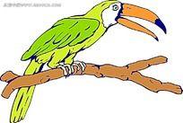 绿色的大嘴鹦鹉时尚漫画