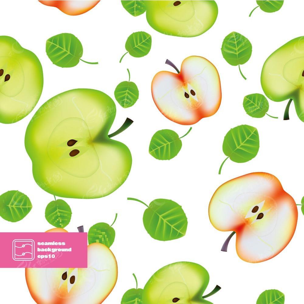手绘苹果剖面图和叶子组合画