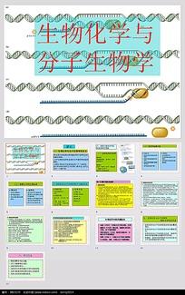 生物化学与分子生物学PPT模板