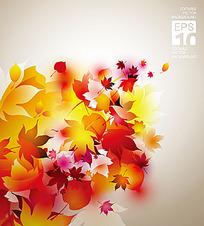 彩色枫叶矢量素材