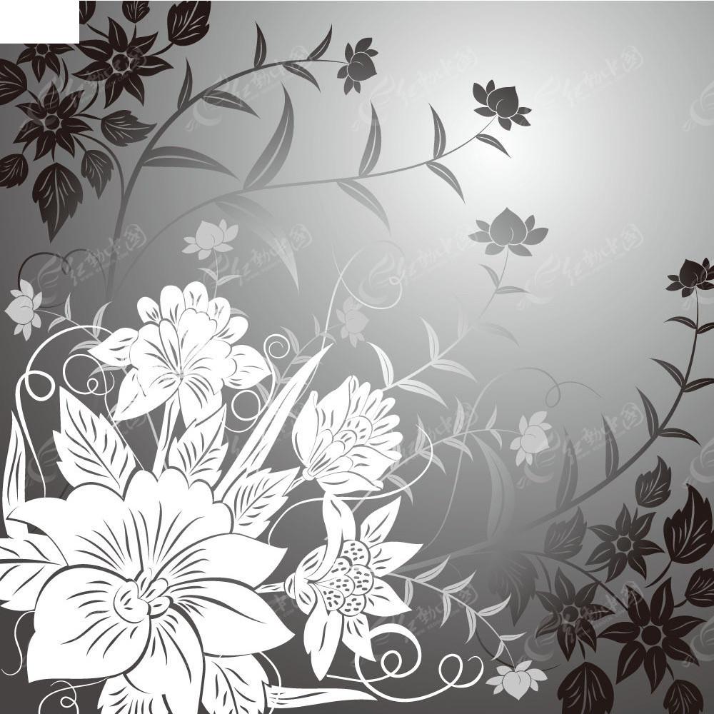 手绘线条花画面素材eps