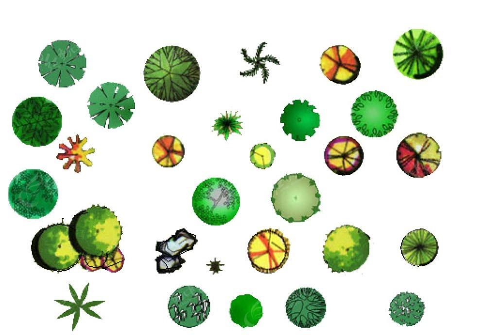 手绘园林植物平面素材彩图psd免费下载_红动网
