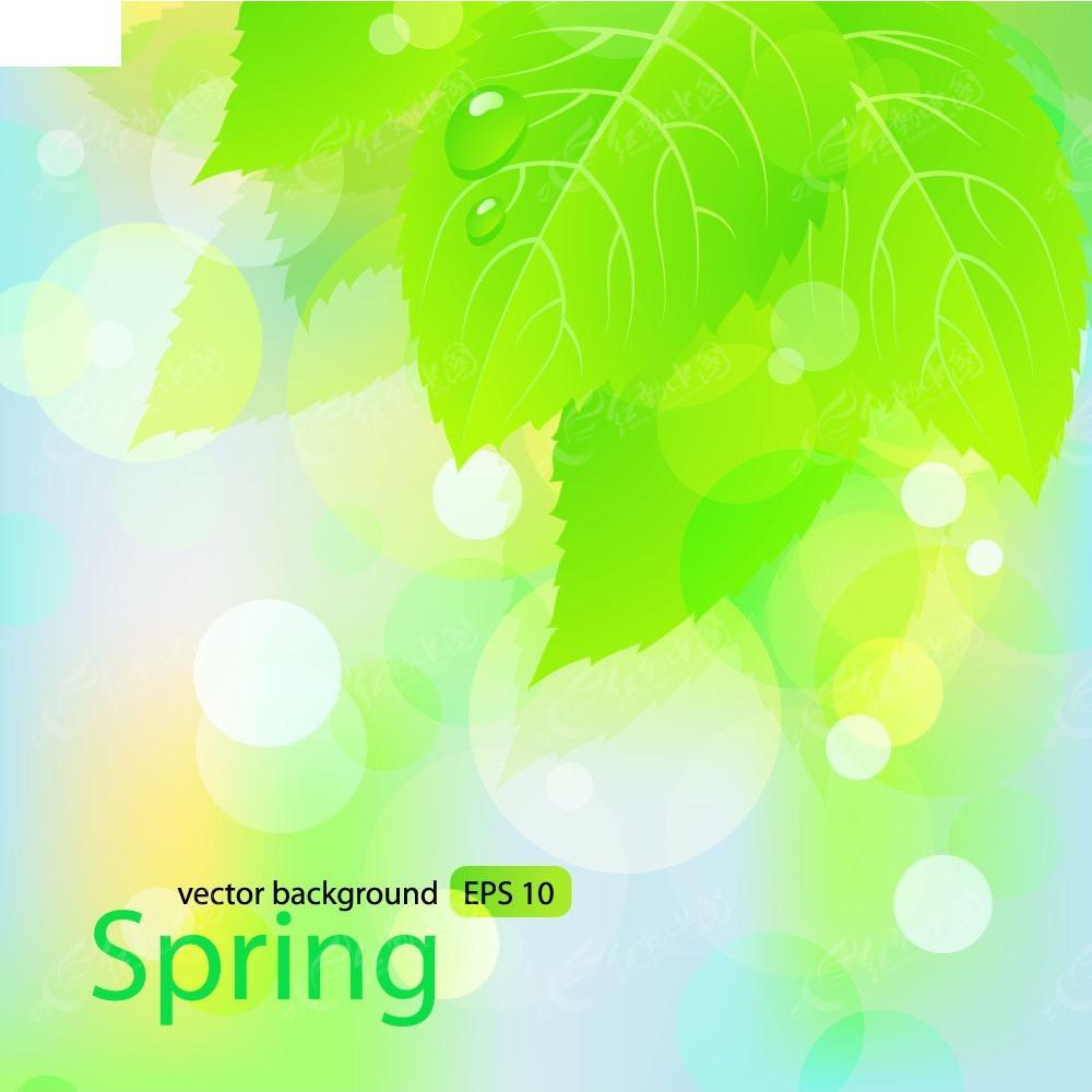 红动网提供底纹背景精美素材免费下载,您当前访问素材主题是春天树叶图片