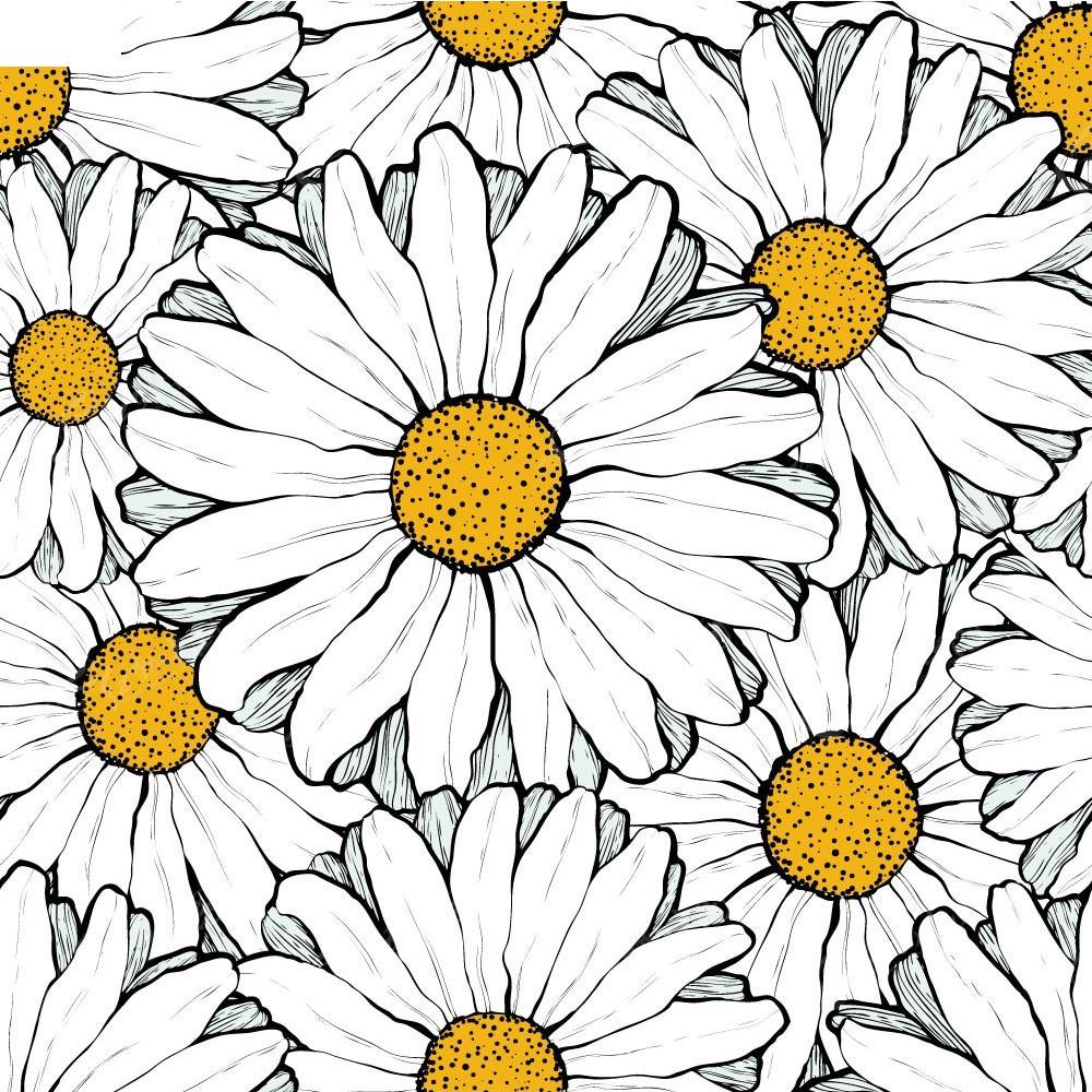手绘白色大波斯菊矢量背景
