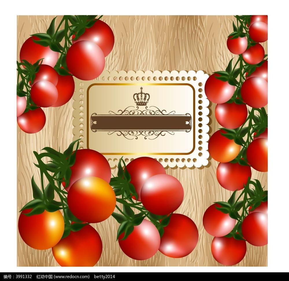 手绘西红柿矢量素材