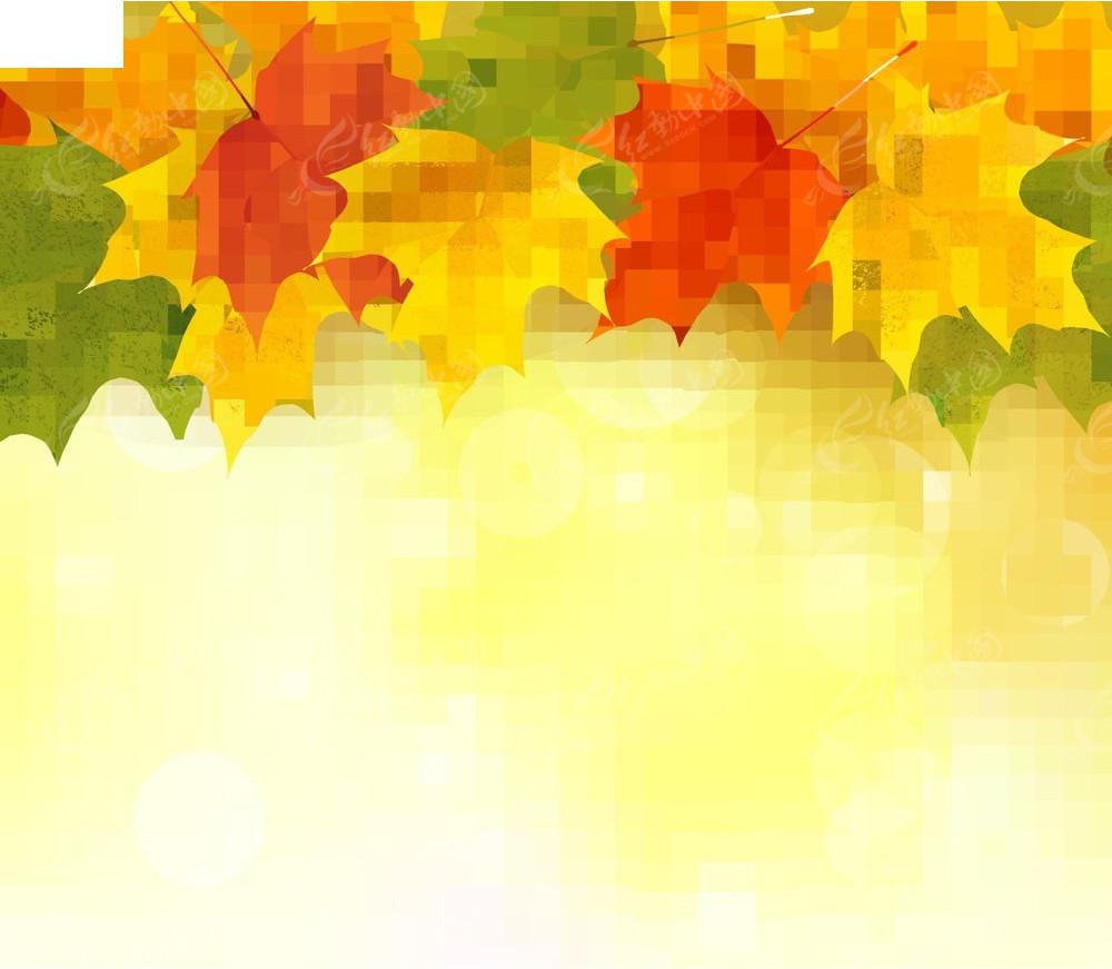 枫叶黄色商业背景素材EPS免费下载 编号3932264 红动网图片