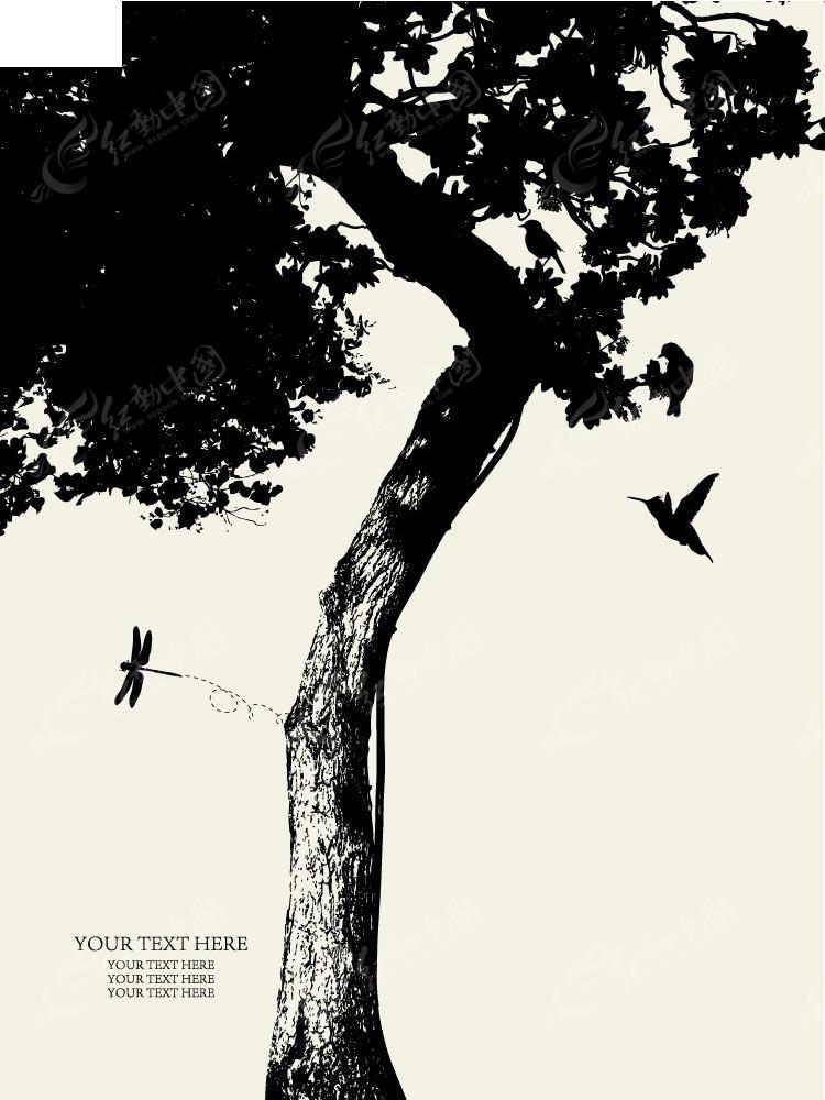 树木蜻蜓蜂鸟剪影精美背景eps免费下载