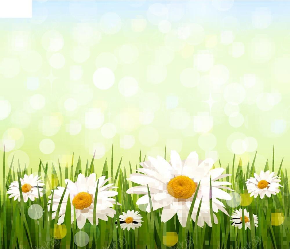 小雏菊商业背景素材