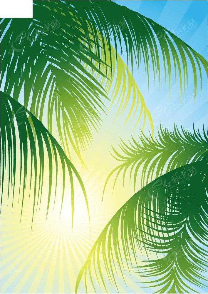 太阳和椰树矢量背景