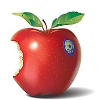 被咬过的红色苹果矢量图