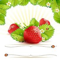草莓草莓花叶边框插画背景