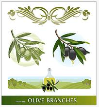 橄榄橄榄油手绘背景画