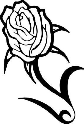 玫瑰花手绘图形