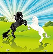 农场的黑白马匹插画