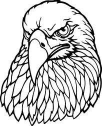 线描老鹰时尚矢量动物插画