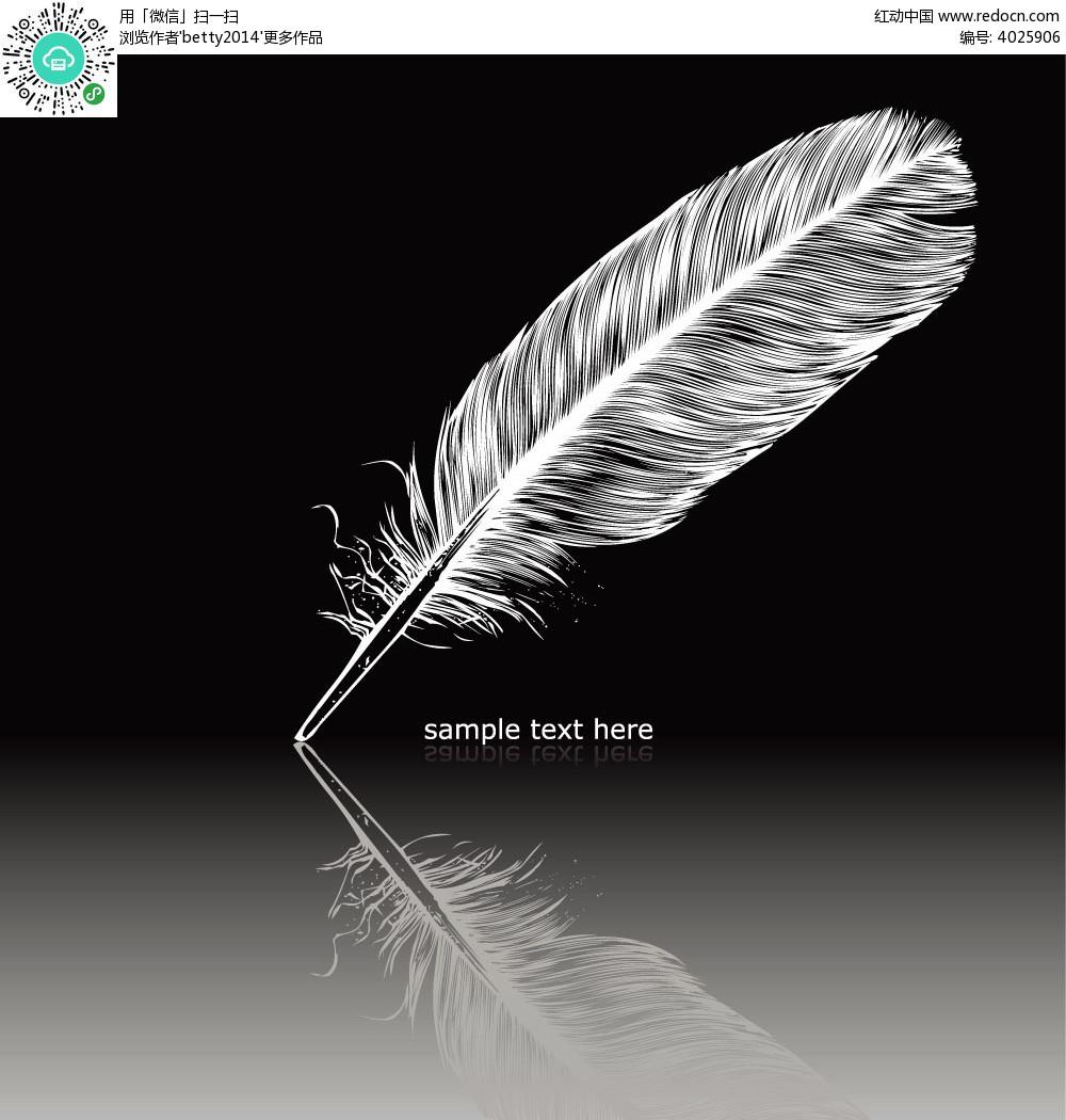 铅笔手绘羽毛图片