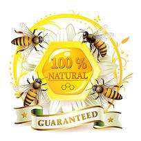 黄色的蜜蜂蜜糖时尚漫画